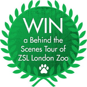 Liontrust ZSL Return of the Kings competition - WIN