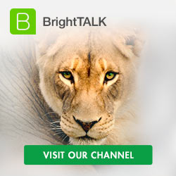 Visit our BightTalk channel