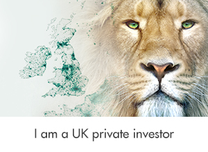 I am a UK private investor