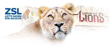 Community engagement and sponsorships - ZSL London Zoo